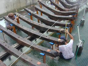 Carefully aligning each frame with the hull lifted out of the water.